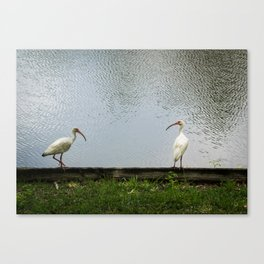 A Lakeside Chat Canvas Print
