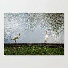 A Lakeside Chat Canvas Print