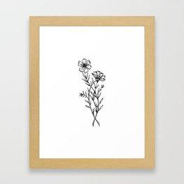Cosmos Wildflower Framed Art Print
