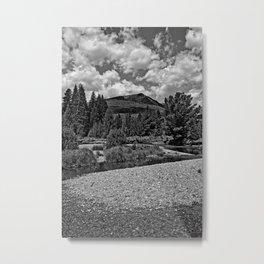 RMNP Colorado River Study 2 Metal Print