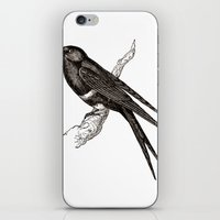 swallow iPhone & iPod Skins featuring Swallow by Artzology