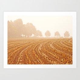 Corn Field in NRW  Art Print