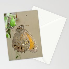 Meadow Brown Butterfly Feeding On Aphids Stationery Cards