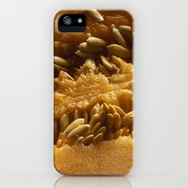 The pulp and melon seeds iPhone Case
