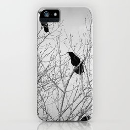 A Murder of Crows iPhone Case