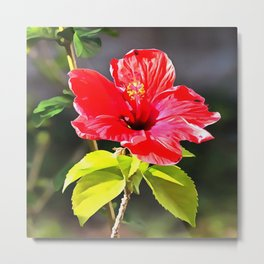 Beautiful Red Tropical Hibiscus Flower Metal Print