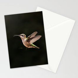 Hummingbirds and bee Stationery Cards