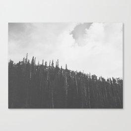 First snow of the season - Brian Head, Utah 9/22/13 Canvas Print