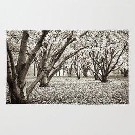 Magnolias in Black & White Rug