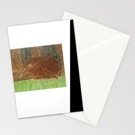 Watercolour & Pencil Kiwi Bird in its natural environment Stationery Cards
