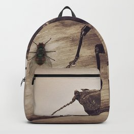 Viewpoints Backpack