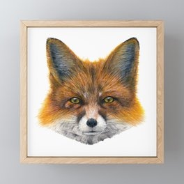Fox face - Painting in acrylic Framed Mini Art Print