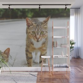 Cat by Pocky Lee Wall Mural
