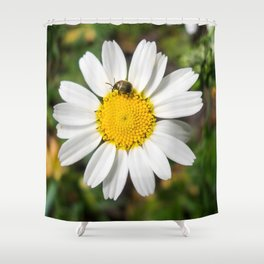 Magic Field Summer Grass - Chamomile Flower with Bug - Macro Shower Curtain