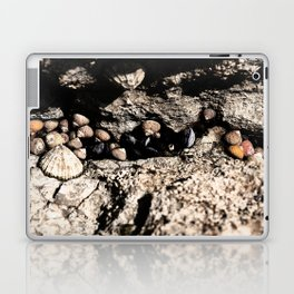 Waiting for the tide Laptop & iPad Skin