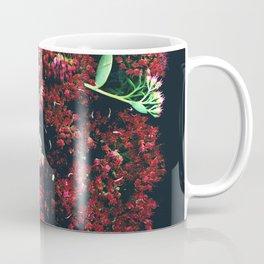 Burgundy Sedum Flowers Coffee Mug
