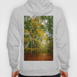 October Forest (2) Hoody