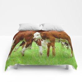 Twins Comforters