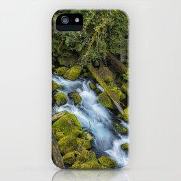 A River's Path iPhone Case