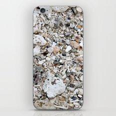 sea send iPhone Skin