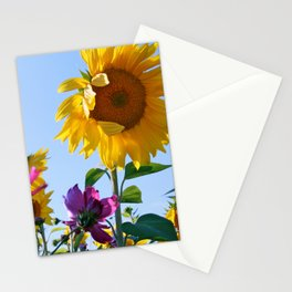 Exit 17 * Sunflower Instruct Stationery Cards