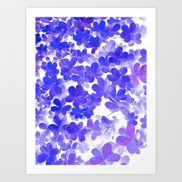 Clover XI Art Print
