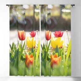 Tulip & Bicycle Magic Light Blackout Curtain