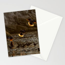 Against the light Stationery Cards