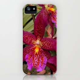 Rose Madder Orchids iPhone Case