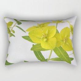 Euphorbia Cornigera Rectangular Pillow