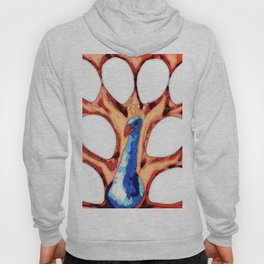 12 PETALS PEACOCK CARTOON Hoody