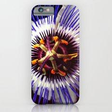 passionflower / Passiflora incarnata  iPhone 6 Slim Case