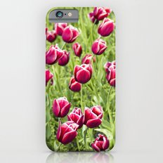 Tulips will remember  Slim Case iPhone 6s