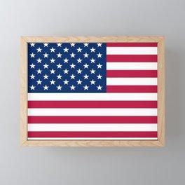 Flag of USA - American flag, flag of america, america, the stars and stripes,us, united states Framed Mini Art Print