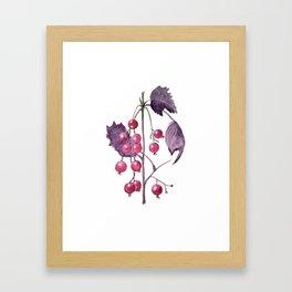 Watercolor Berries in Magenta Framed Art Print