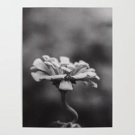 Minimal Flower Poster