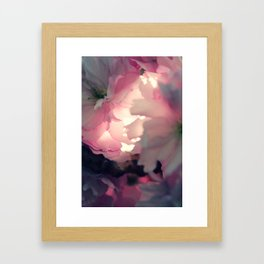 sakura - close up - three Framed Art Print