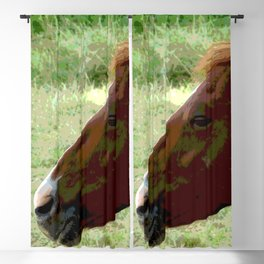 Horse Blackout Curtain