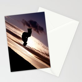Sun Tricking  Stationery Cards