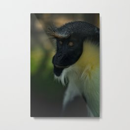 Diana Monkey Metal Print