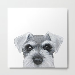 Schnauzer Grey&white, Dog illustration original painting print Metal Print