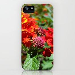 NoCal Lantana Camara iPhone Case