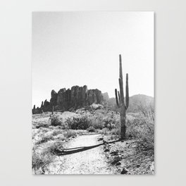 Arizona Desert Canvas Print