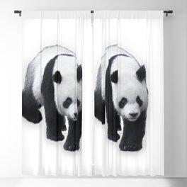 Walking Panda Blackout Curtain