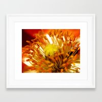 halo Framed Art Prints featuring Halo by Monica Ortel ❖