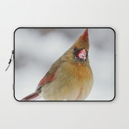 Female Cardinal in The Snow Laptop Sleeve