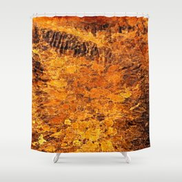 autumnal reflections Shower Curtain
