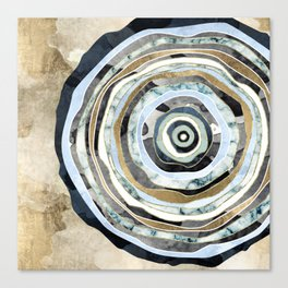 Wood Slice Abstract Canvas Print