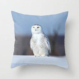 My favorite snowman Throw Pillow