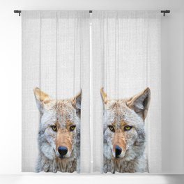 Coyote - Colorful Blackout Curtain
